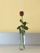 Flasche vase